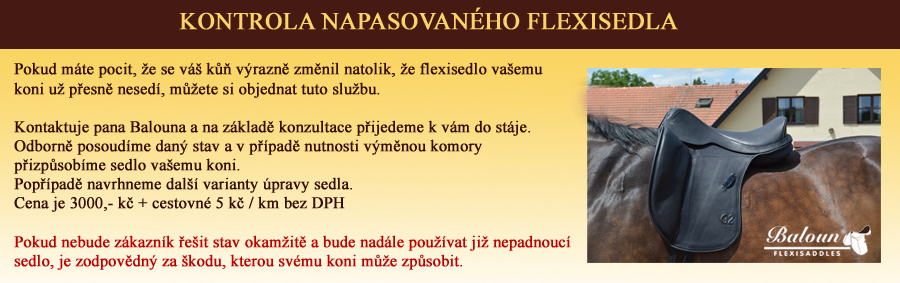 kontrola napasasovaného flexisedla kopie